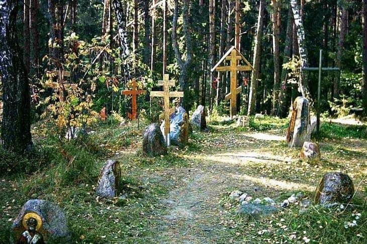 Krzyże na uroczysku Kuropaty fot. wikimedia.org