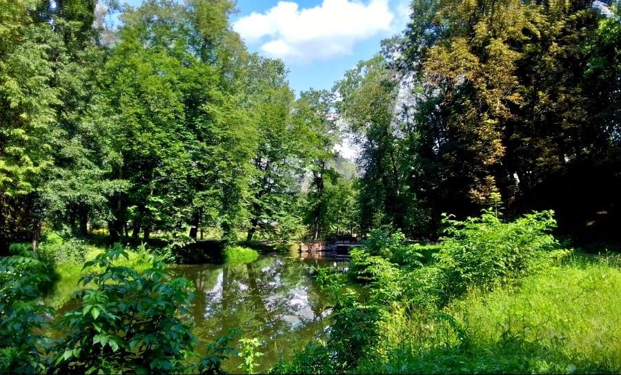 Dorzecze Pulwy to świetne miejsce na rodzinne spacery i trawersy rowerowe. fot. pixababy
