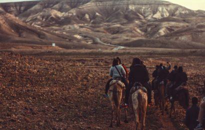 Konne wyprawy - nieodłączny element mongolskiej kultury
